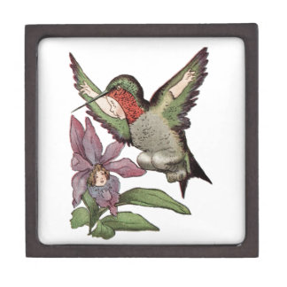 SRTA HUMMINGBIRD - pájaro personificado Caja De Regalo De Calidad