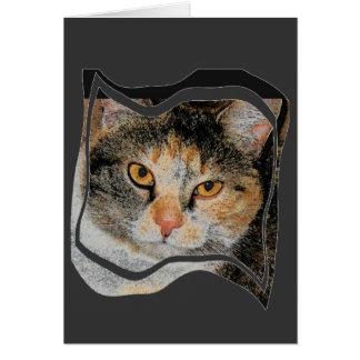 Srta. Kitty Card Tarjeta De Felicitación