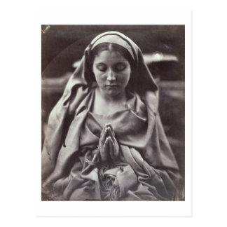 St. Agnes (albumen print) Postcard