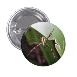St Andrew's Cross Spider Badge Button