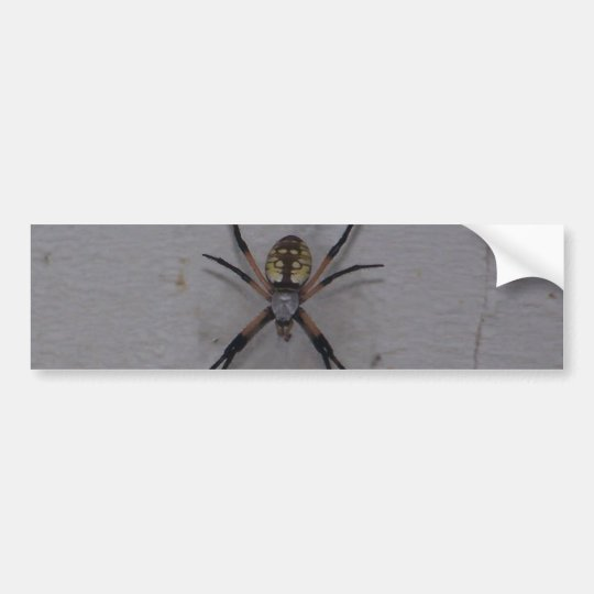 St. Andrews Cross Spider Bumper Sticker