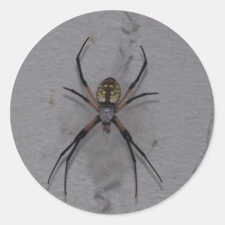 St. Andrews Cross Spider Classic Round Sticker