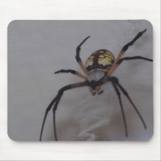 St. Andrews Cross Spider Mouse Pad