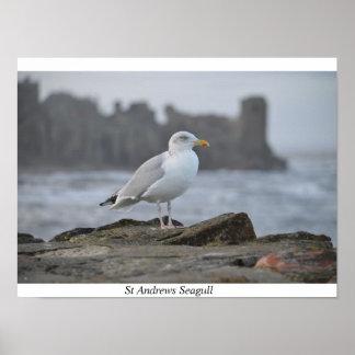St Andrews Seagull Poster