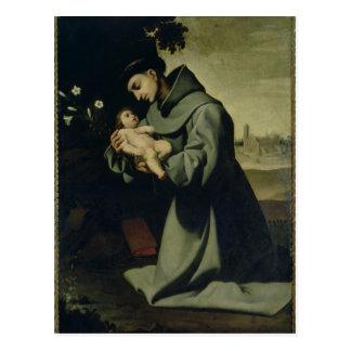 St. Anthony of Padua Postcard