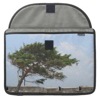 St Augustine Fort Tree  Castillo de San Marcos MacBook Pro Sleeve