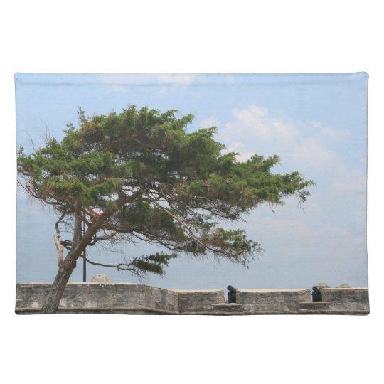 St Augustine Fort Tree  Castillo de San Marcos Placemat