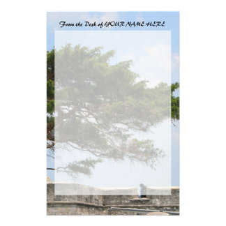 St Augustine Fort Tree  Castillo de San Marcos Personalized Stationery