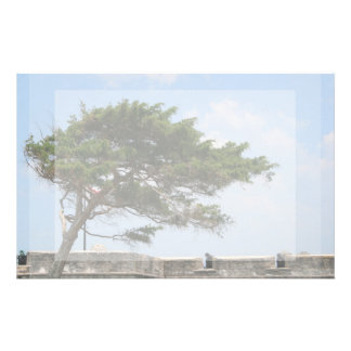St Augustine Fort Tree  Castillo de San Marcos Stationery Paper