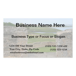 St Augustine view from castle Double-Sided Standard Business Cards (Pack Of 100)
