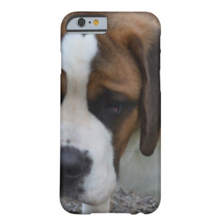 St Bernard adorable Funda De iPhone 6 Barely There