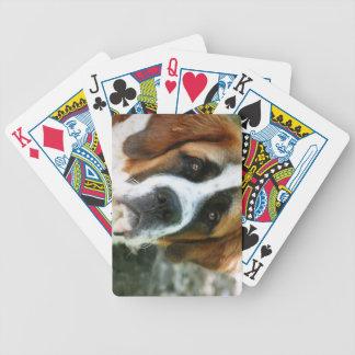 St Bernard Baraja Cartas De Poker