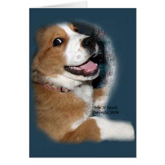St. Bernard Bernese Mountain Dog Smile Card