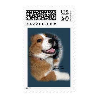 St. Bernard Bernese Mountain Dog Smile Postage