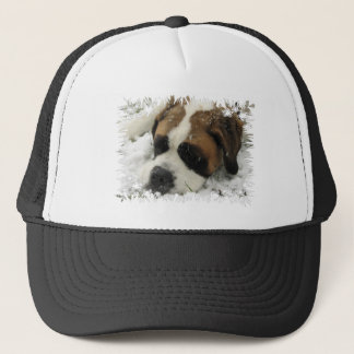 St Bernard Dog Baseball Hat