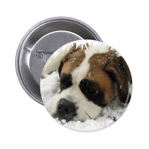 St Bernard Dog Button