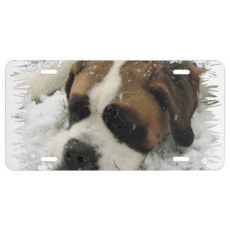 St Bernard Dog License Plate