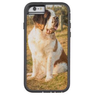 St Bernard dog Tough Xtreme iPhone 6 Case