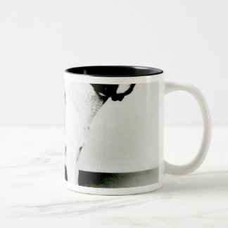 St. Bernard Dog Two-Tone Coffee Mug