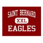 St Bernard - Eagles - altos - St Bernard Tarjeta Postal