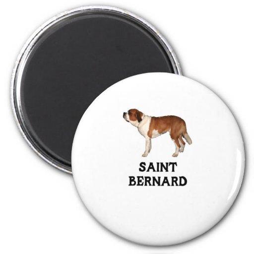 St Bernard Imanes De Nevera