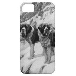 Case-Mate Vibe iPhone 5 Case with Saint Bernard Phone Cases design