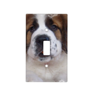 St Bernard Light Switch Cover