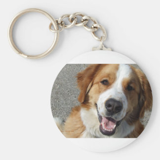 St. Bernard Mix Happy Dog Keychain