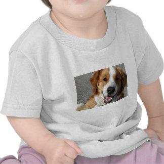 St. Bernard Mix Happy Dog Tshirt