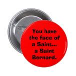 St Bernard. Pin