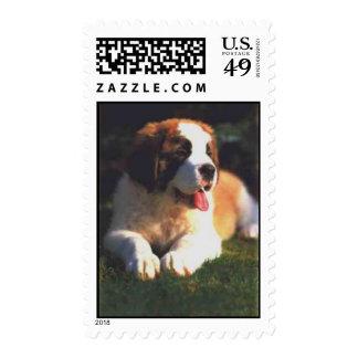 St. Bernard Postage Stamp