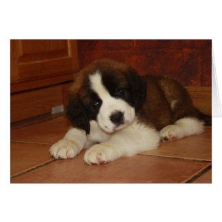St. Bernard Puppy Greeting Card