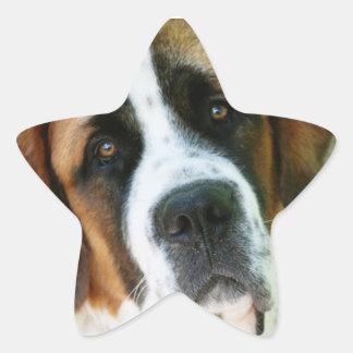 St. Bernard Star Sticker