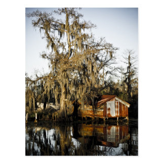 St Charles Parish Swamp Reflections Postcard