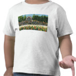 St. Clement's College Grotto T-shirts