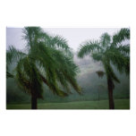 St. Croix Tempest Photographic Print