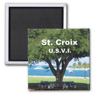 St. Croix U.S.V.I. Imán Cuadrado
