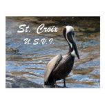 St. Croix U.S.V.I. Post Card