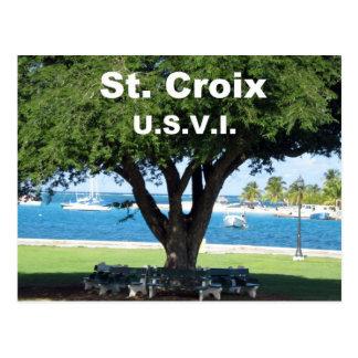 St. Croix U.S.V.I. Tarjeta Postal
