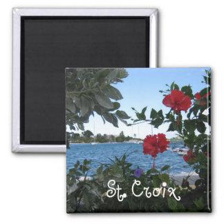 St. Croix, V.I. Imán Cuadrado