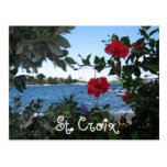 St. Croix, V.I. Post Cards