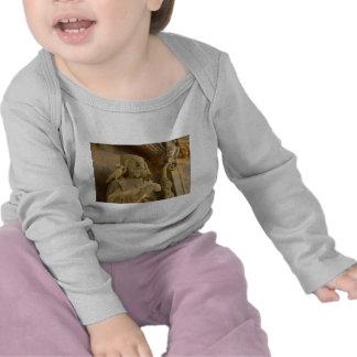 St David T-shirts