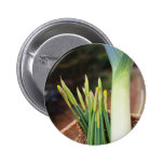 St David's Day Buttons