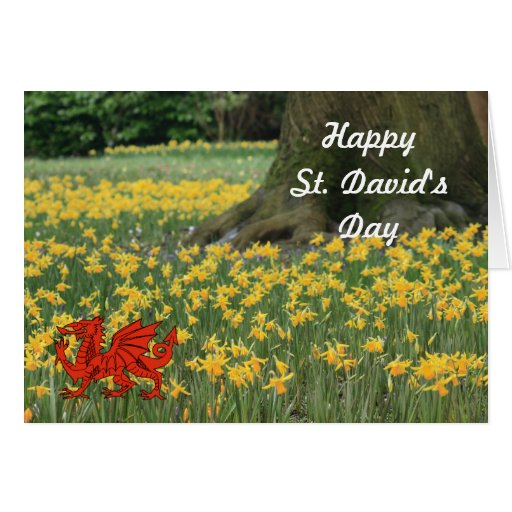 St. David's Day Daffodils Greeting Cards