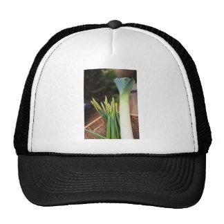 St David's Day Trucker Hats