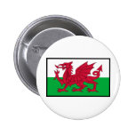 St. David's Day Tees, Gifts, Cards, Totes Button