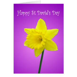 St Davids Day Welsh Daffodil Card