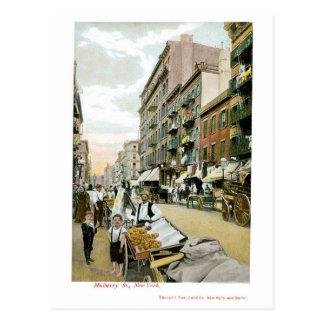 St. de la mora, New York City Tarjeta Postal