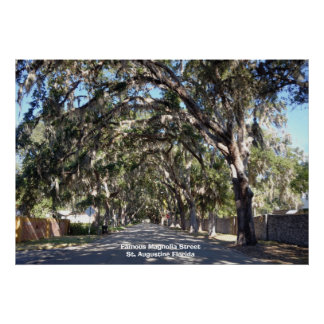 St famoso de la calle de la magnolia, Augustine… Posters