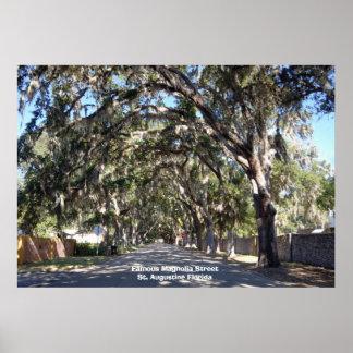 St famoso de la calle de la magnolia, Augustine… Póster
